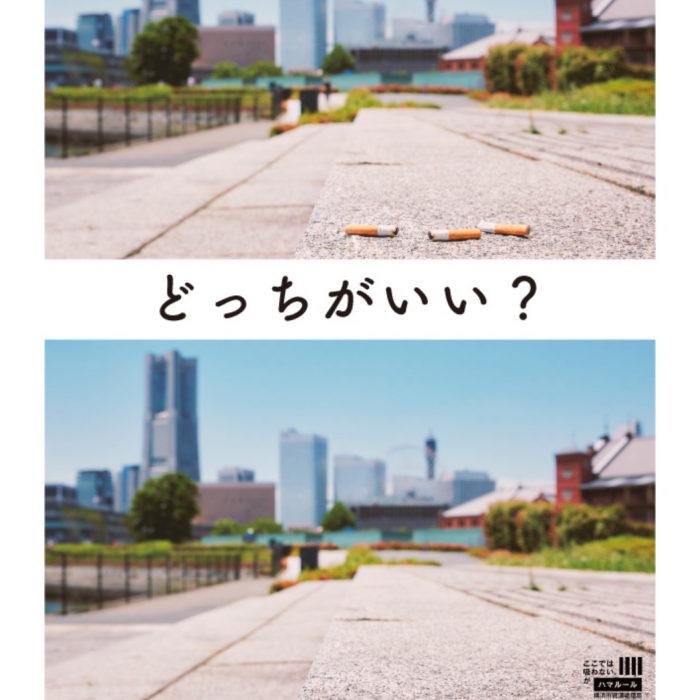 Advertisement - 6